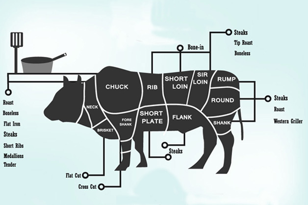 Graphic on the different cuts of meat in a cow