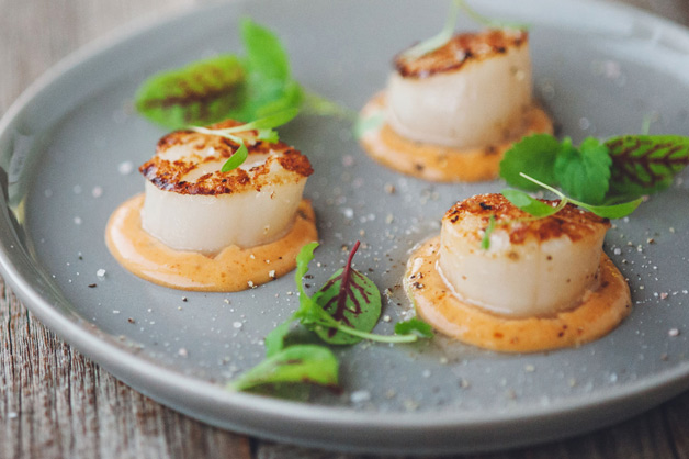 Scallop Plating V2