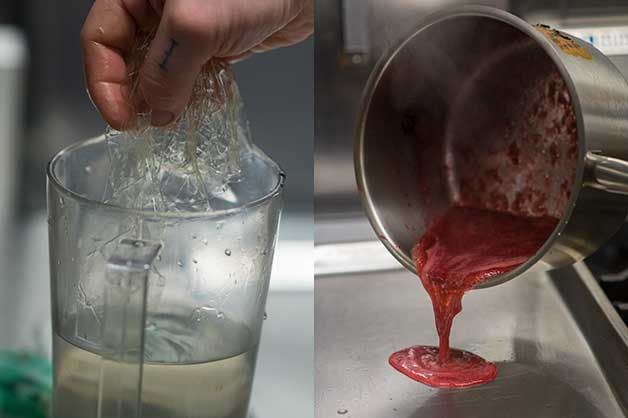 A chef blending the ingredients to make the jelly