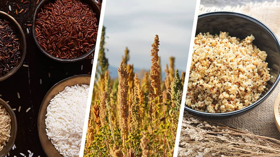 The differences between rice and quinoa and where they work best on your menu
